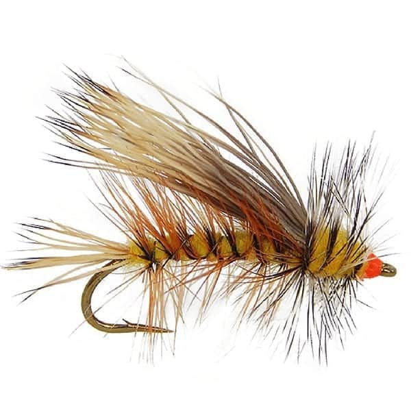 attractor flies for trout, brook trout flies, trout flies, dry flies, stonefly fly patterns, spring trout flies, summer trout flies, stimulator flies for sale, yellow stimulator fly