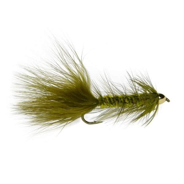 6 CONE HEAD Woolly Bugger Fishing Flies Fly #8 hook w Flash Trout Bass Pike
