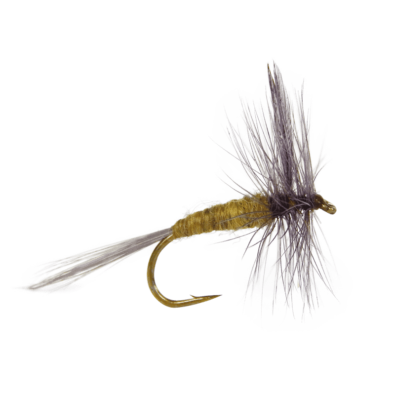 blue wing olive dry fly, bwo dry fly for sale, baetis adult flies, baetis flies, trout flies for trout, blue wing olive hatch, fly fishing flies, dry flies