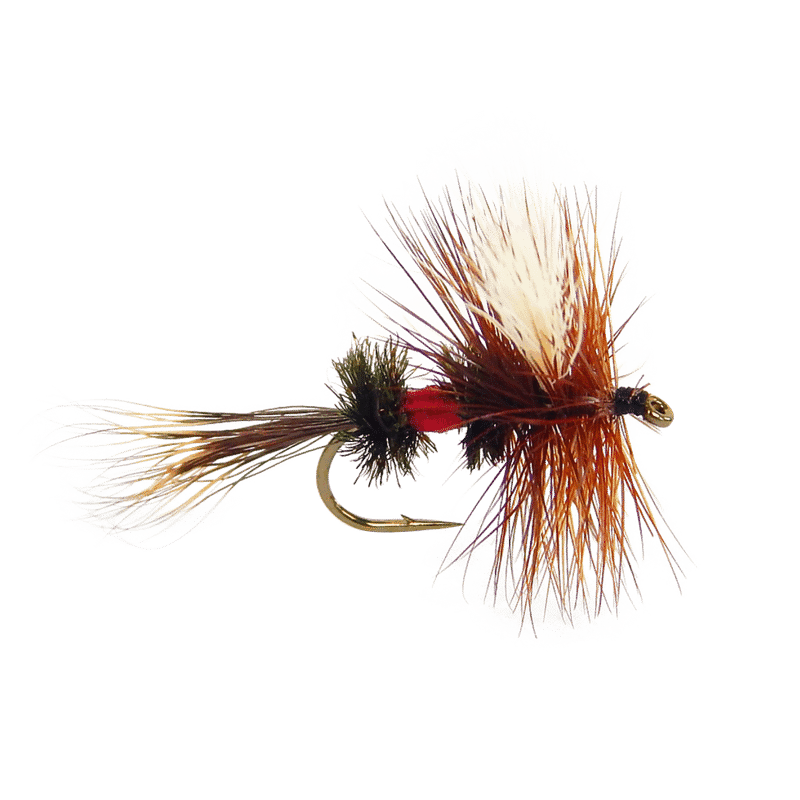 royal wulff, attractor fly, brook trout flies, wulff flies, dry fly, trout flies, small stream fly pattern