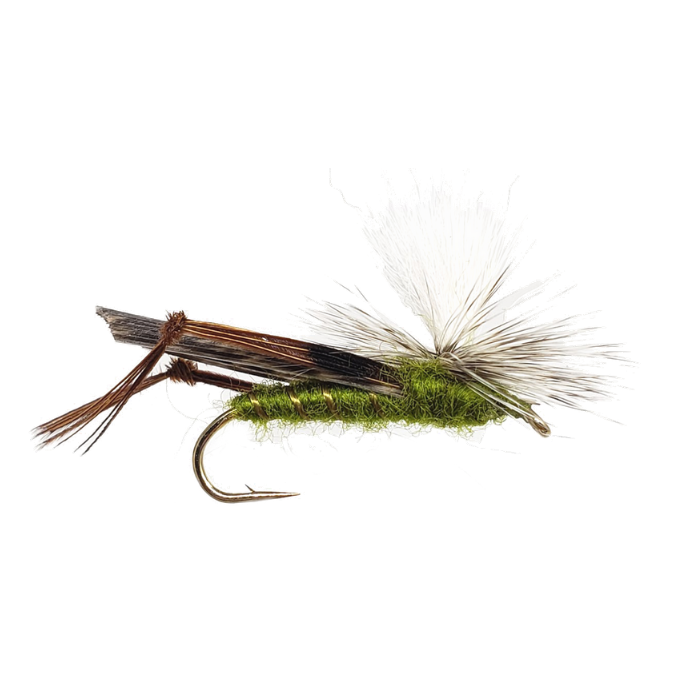 Size 10 Pack Of Six. Olive CDC Hopper Fly Fishing