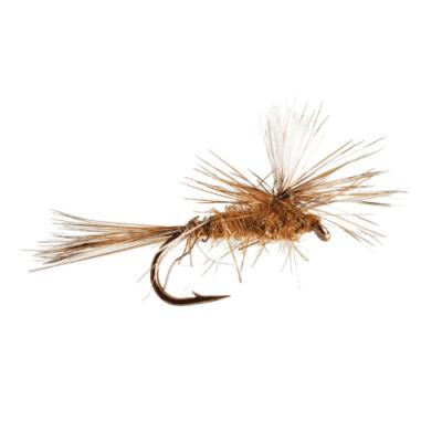Wahl der HakengroBe B405 Pechetruite 25 x KAMASAN Fliegenhaken for Dry emerger Fly Tying 1X Short