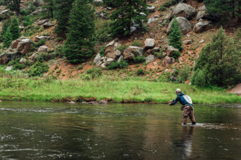 fly fishing low clear trout water