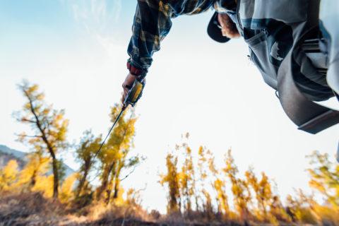 Fly Fishing Fall Colorado